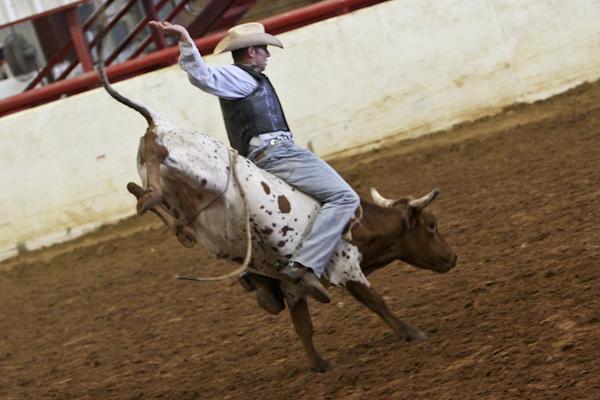 Big_D_Rodeo