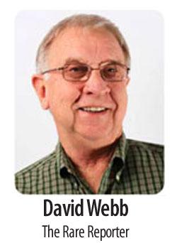 Webb-David