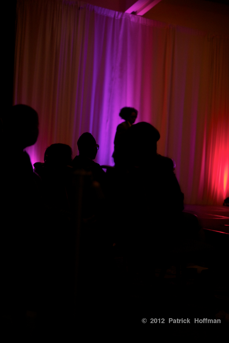 Fashion_Show_Stage_Silhouette__3_Copyright_2012_Patrick_Hoffman_All_Rights_Reserved  986