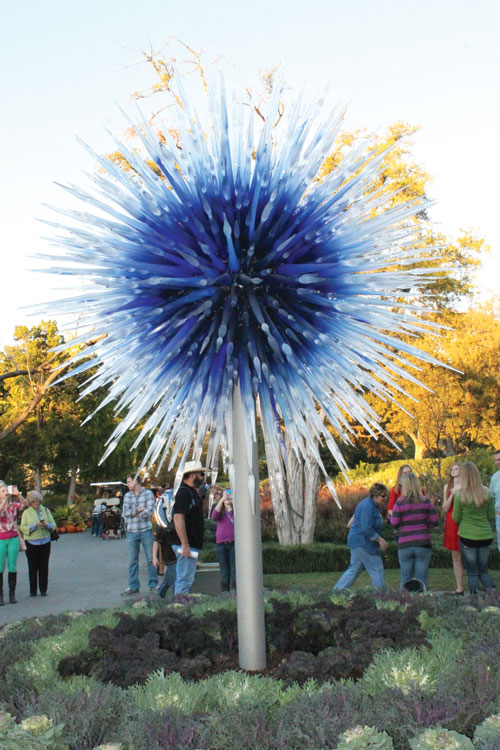 A glass act: Chihuly at the Arboretum