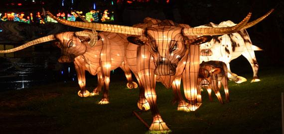Chinese Lantern Festival at Fair Park