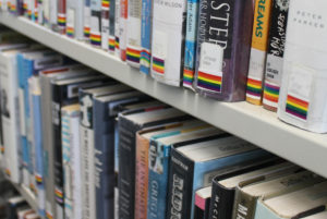 LGBT collection at the Oak Lawn Branch
