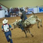 77_World_Gay_Rodeo_Finals_Copyright_2013_Patrick_Hoffman_All_Rights_Reserved