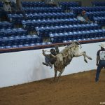 80_World_Gay_Rodeo_Finals_Copyright_2013_Patrick_Hoffman_All_Rights_Reserved