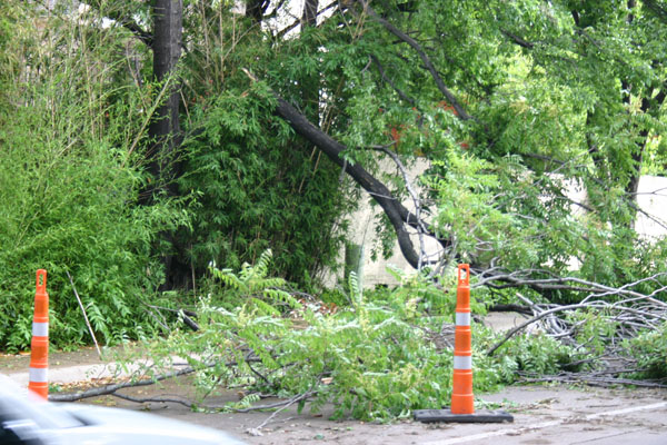 City crews work to clean up Oak Lawn