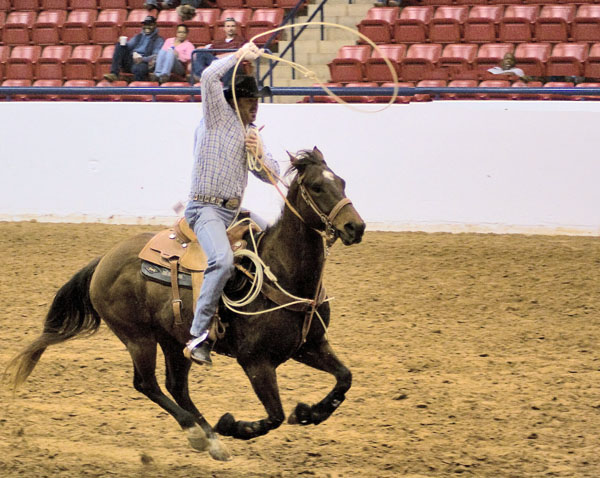 Rodeo coming back to Cowtown