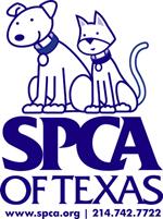 SPCA offering reward in animal cruelty case