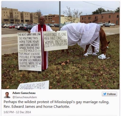 Mississippi pastor wants to marry his horse