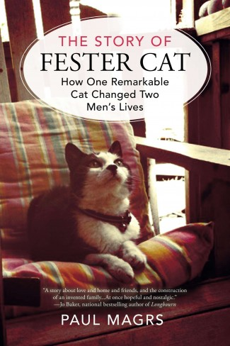 Story of Fester the Cat