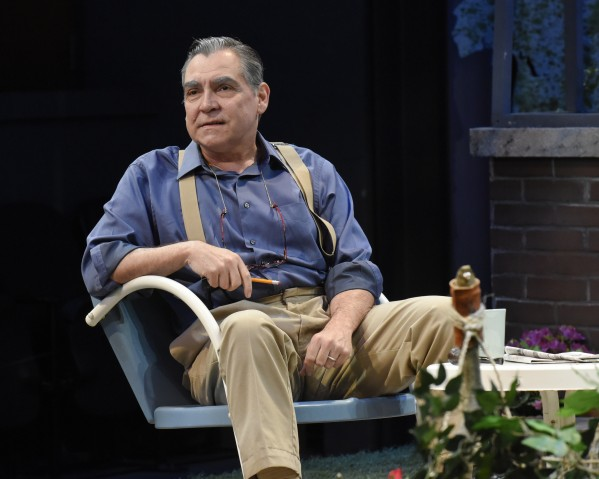 Terry Martin in 'All My Sons' (Photo by Karen Almond)