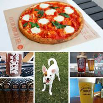 Beer and pizza going to the dogs