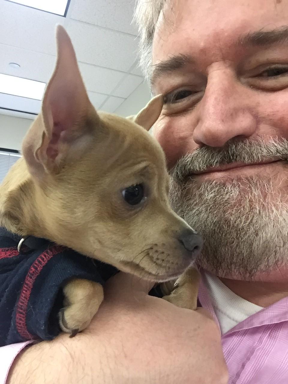 Meet Dallas Voice's new junior mascot, Henry