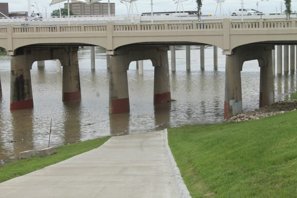 Why does Dallas City Council want to replace the trees growing in the river with a toll road?