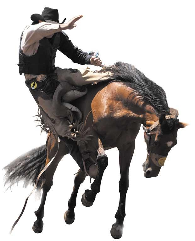 Rodeo-art