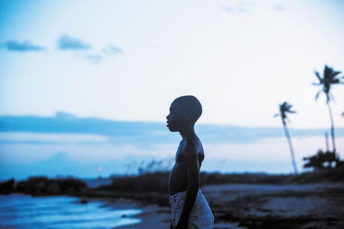 The Oscar nominations are out and as expected 'Moonlight' is a major contender