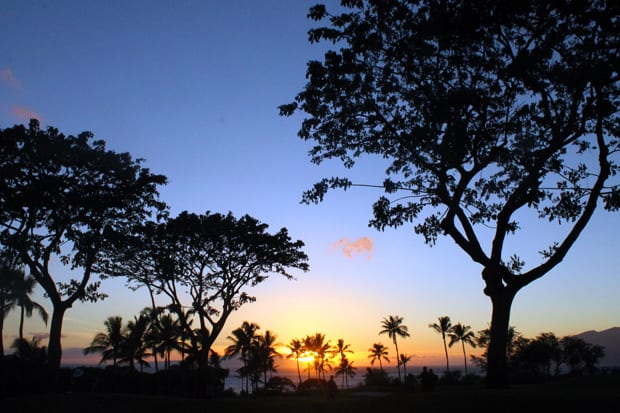 Maui now-y
