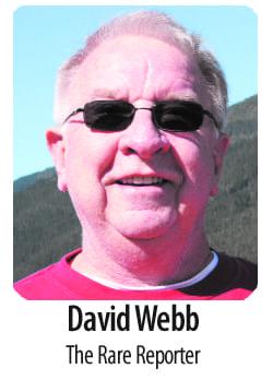 david-webb