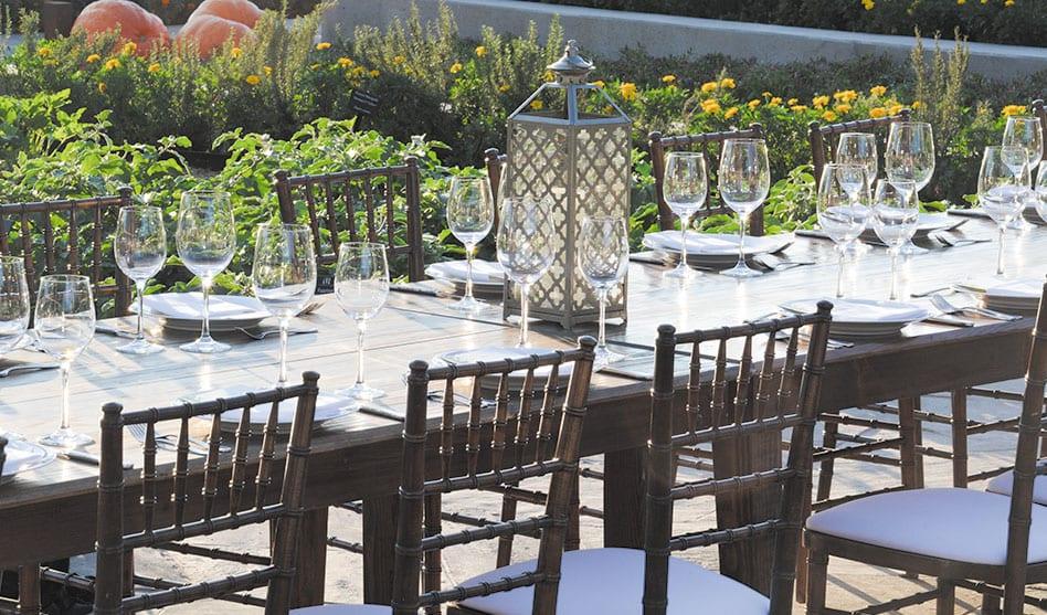 Garden-to-table