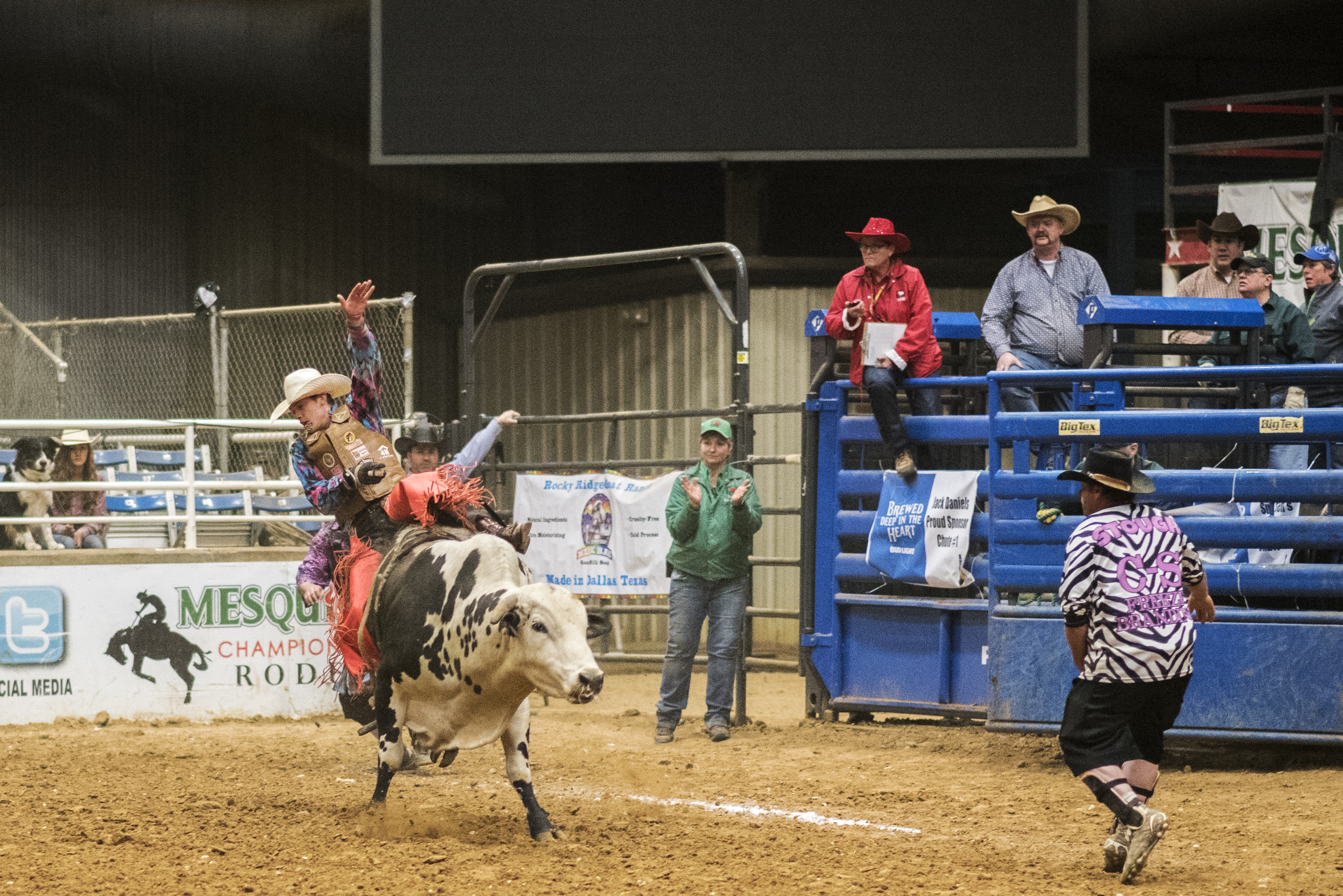 PHOTOS: TGRA's 35th Annual Texas Traditions Rodeo (6 of 6)