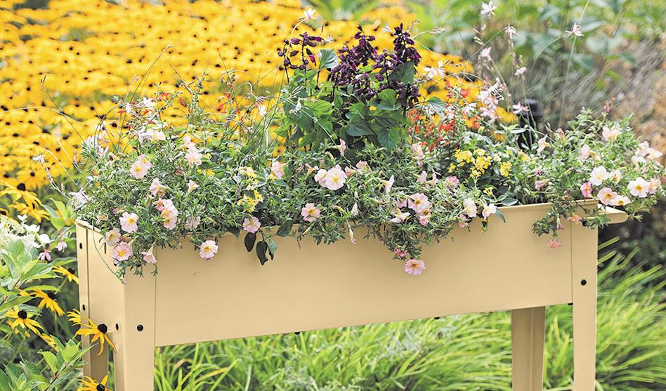Elevate your garden