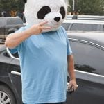 Undercover panda on The Strip
