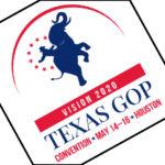 Texas GOP platform plank would criminalize doctors treating trans kids