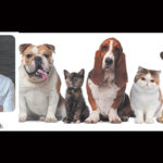 WOOF: Dr. Josh says brush your pet's teeth every day