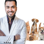 Vaccines: Which are the most important ones for dogs?